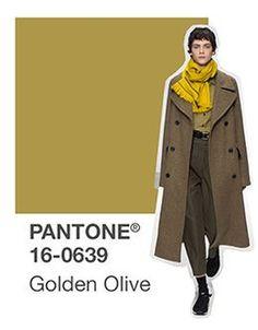 pantone golden olive
